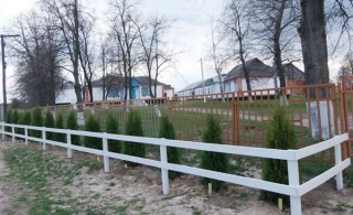Три сотні туй прикрасили вулиці села у Гайсинському районі