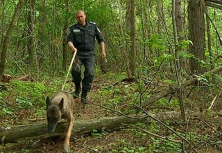 Поліція повідомила про затримання убивць пенсіонера із Гайсинського району