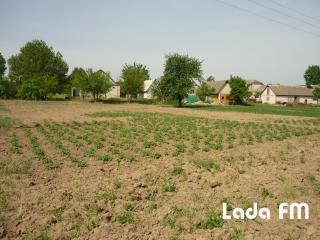 В селі Лукашівка продається новий будинок