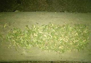 У селі біля Ладижина поліцейські вилучили зброю і наркотики
