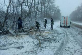 Негода спричинила ДТП біля Гайсина