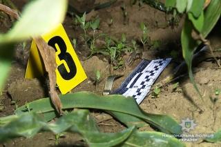 Від вибуху гранати біля Бершаді поранений поліцейський