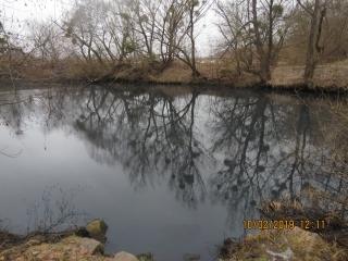 Неочищеними стоками з Гайсинського району отруєно річку Сіб